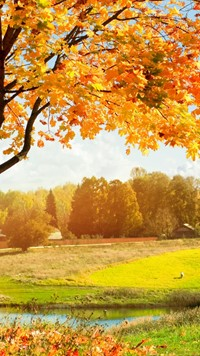 Amazing colorful Autumn Landscape wallpaper