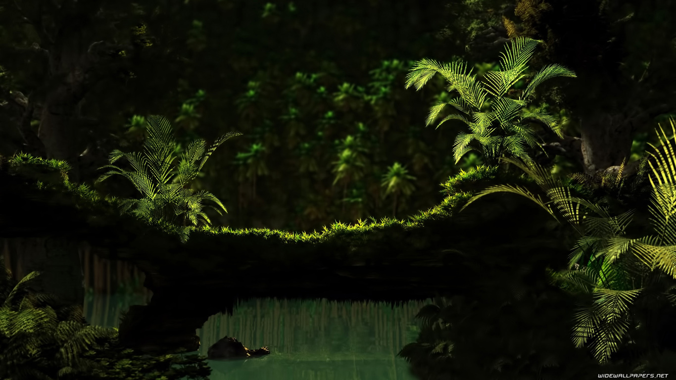 green plant dark shadow forest wallpaper for Desktop